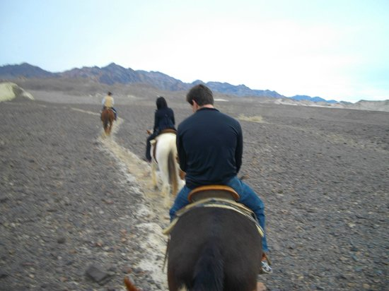 Furnace Creek Inn and Ranch Resort:                   horseback ride with Furnace Creek Sables, Furnace Creek Ranch