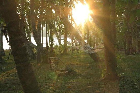 Ashtamudi Villas:                   Sunset