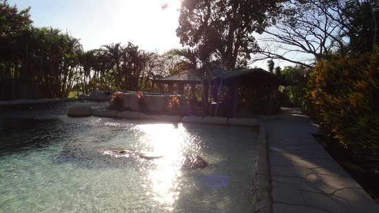 Buena Vista Lodge&Adventure: der Pool