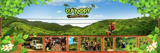 Canopy Adventure Zip Line Tours & Canopy Adventure Zip Line Tours (Punta Cana) - All You Need to ...