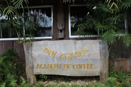 Mae Suai, Thailand:                   Coffee Academy Built By The Villagers To Train Farmers