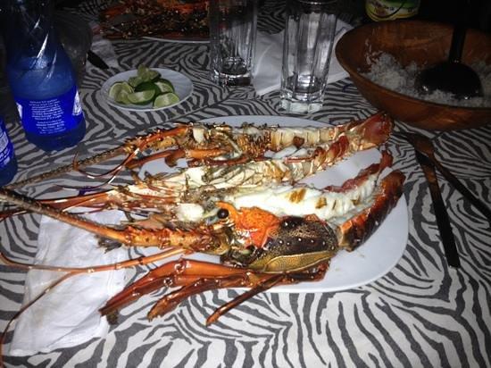 Lo Spuntino: Aragosta freschissima su prenotazione