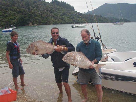 Te Mahia Bay Resort :                   Fishing at Te Mahia