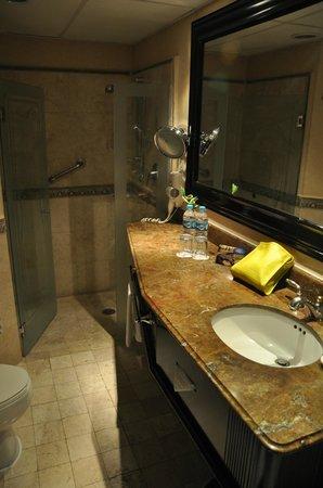 Crowne Plaza Hotel de Mexico: baño