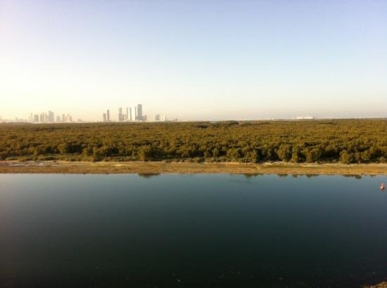 Anantara Eastern Mangroves Hotel & Spa:                   view of the mangroves from the room