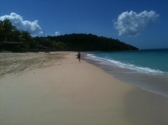 Galley Bay Resort:                   The Fabulous Beach