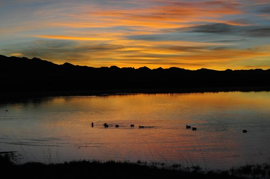 Willcox Playa Wildlife Area:                   Cochise Lake Birding Area at Sunrise