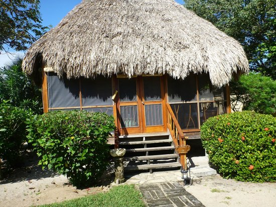 Turtle Inn:                   Our cabana                 