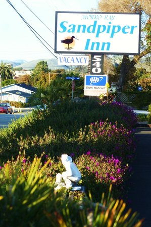 Morro Bay Sandpiper Inn: Garden
