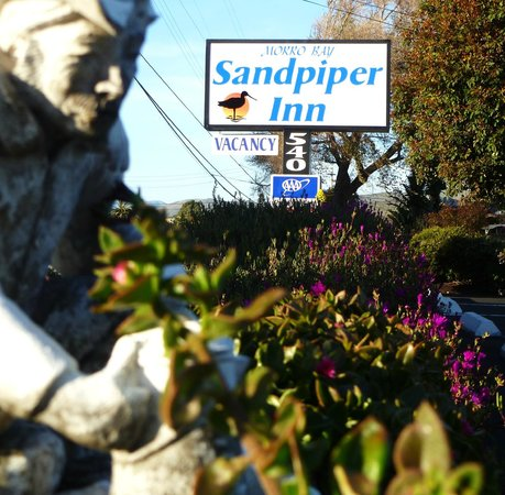 Morro Bay Sandpiper Inn: Old piper