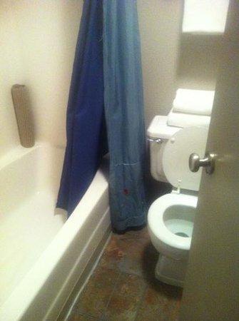 Mingo Motel:                                     smallish but clean bathroom