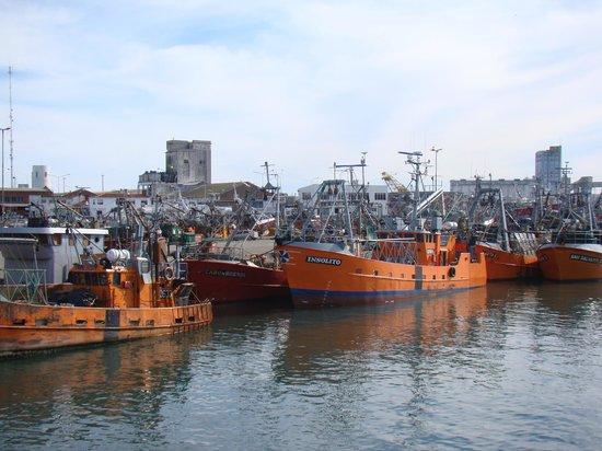 Puerto de Mar del Plata: barcos pesqueros