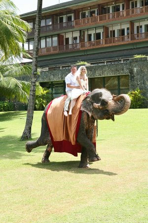 Bentota Beach by Cinnamon:                   Elephant ride