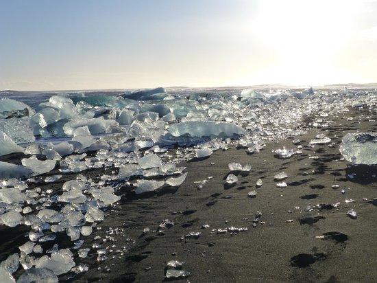 Diamond Beach Picture Of Extreme Iceland Reykjavik Tripadvisor