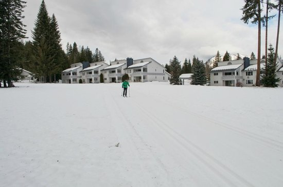 Kahler Glen Golf & Ski Resort:                   xc skiing in front of condo units D & E