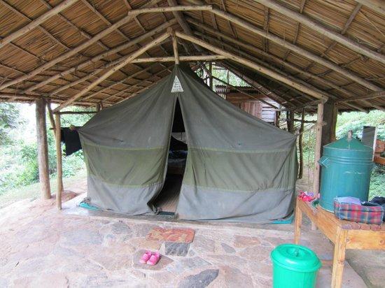 Bushara Island Camp:                   Tent