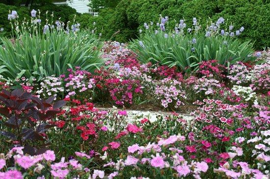 Colonial Williamsburg House Garden