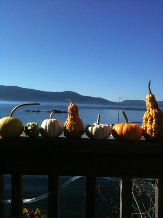 Seaside Kitchen: Sunny Fall day on the deck