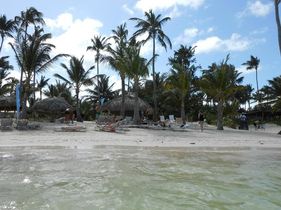 Catalonia Royal Bavaro:                   plage