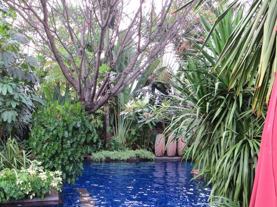 Sheraton Grande Sukhumvit, A Luxury Collection Hotel:                   Gorgeous pool