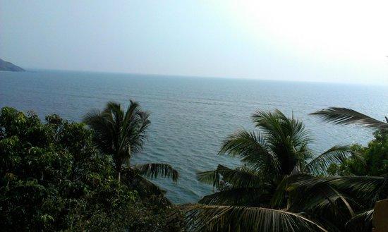 Amarya Shamiyana :                   Vu du Fort ( conseil de visite de l'hôtelier)