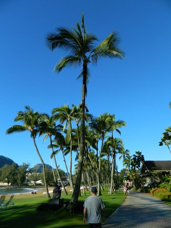 Marriott's Kaua'i Beach Club: Walkway along Kalapaki Beach