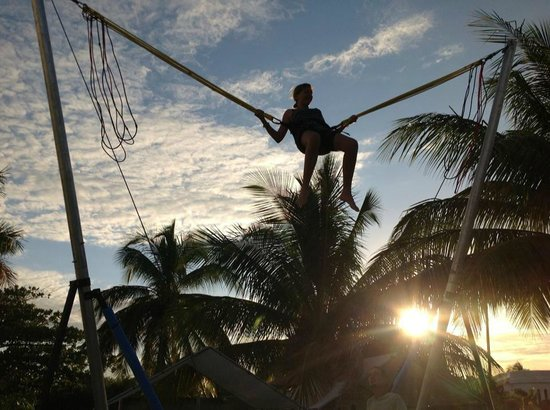 Toucan Jumper Bungee Trampoline: Bungy Jumpin' at sunset