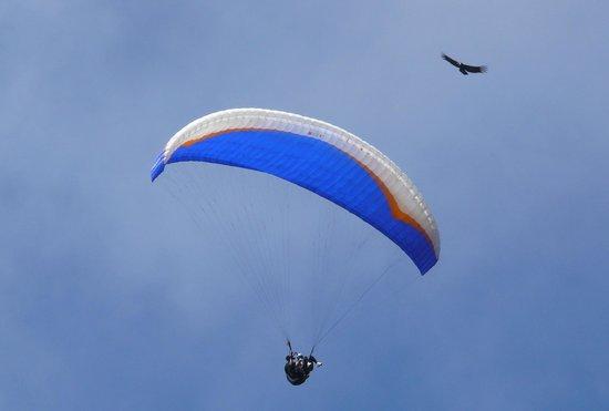 Merlo, Argentina:                   Volando en parapente