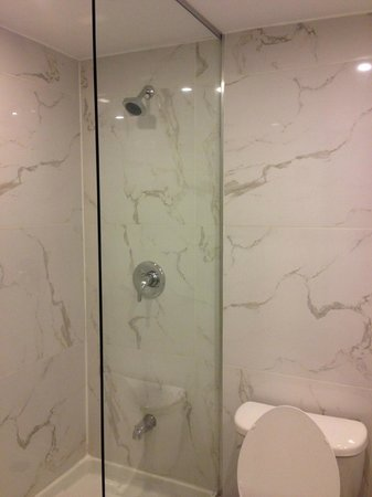 Bond Place Hotel : shower