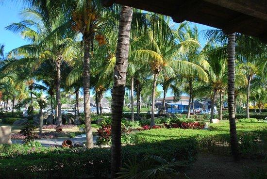 Melia Cayo Santa Maria: view from cafeteria