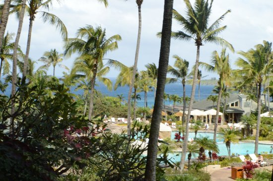 The Ritz-Carlton, Kapalua:                   Room view, $350 a night, decent