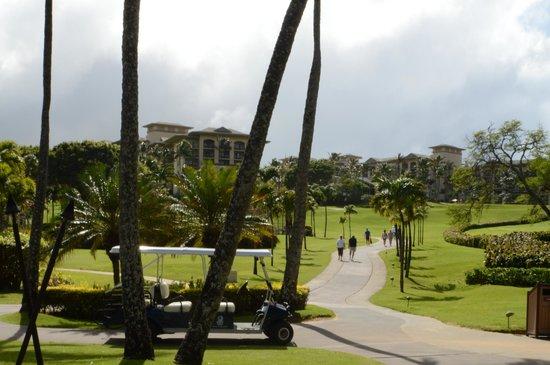 The Ritz-Carlton, Kapalua :                   From beach looking back