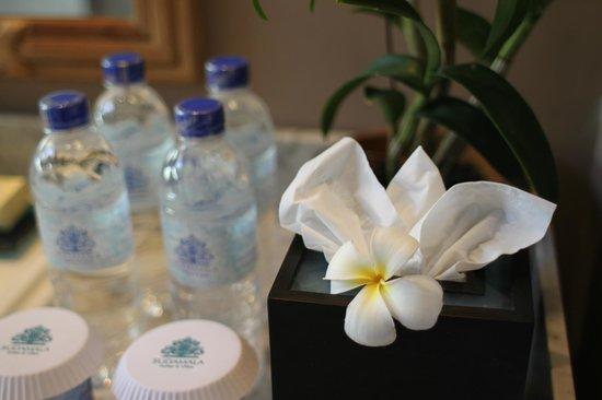 Sudamala Suites & Villas:                   到着した日だけ花が飾ってありました