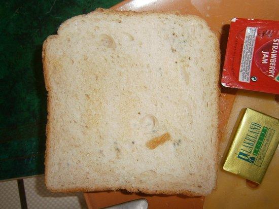 Durban Residence:                   beschimmelde toast