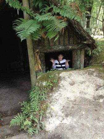 Buried Village of Te Wairoa:                   A Maori Whare (House)