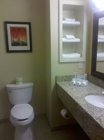 Holiday Inn Express Hotel & Suites Loveland:                   sink