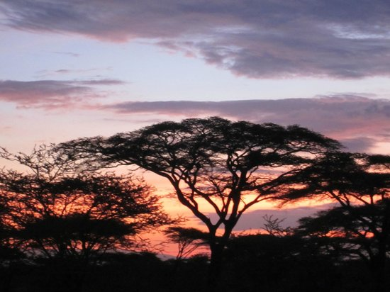 Sunrise at Ndutu Safari Lodge
