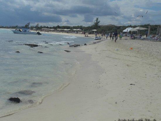 Paradisus Playa Del Carmen La Esmeralda:                                                       La playa de las familias llena de piedras,