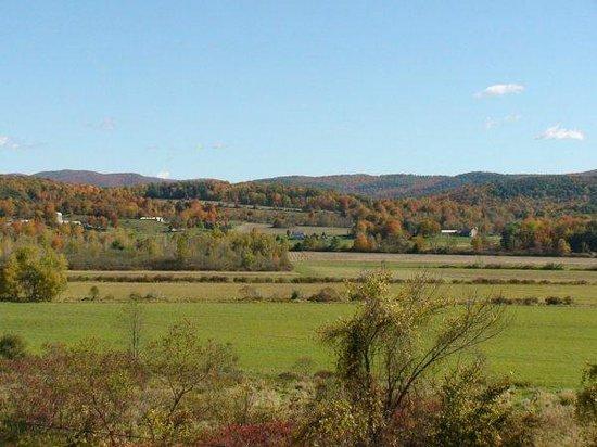 Hampton, NY:                                                       Fall Patio View