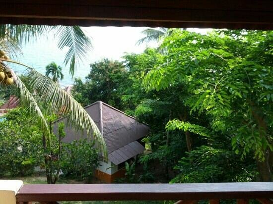 Hi Coral Cove Bungalow:                                     view from terrace