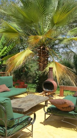 Arusha Safari Lodge: Patio With Chiminea