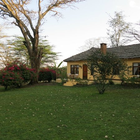 Arusha Safari Lodge:                   Cottage eight