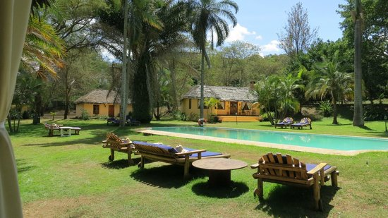 Arusha Safari Lodge:                   Pool and lodge cottages