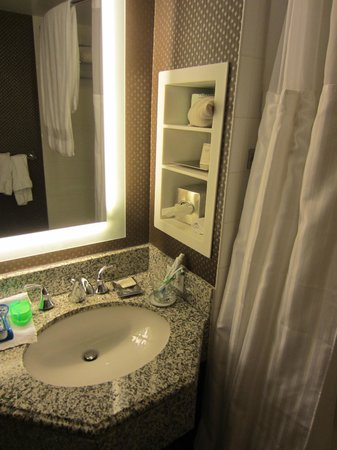 New York Hilton Midtown:                                     Small restroom. No space for your things