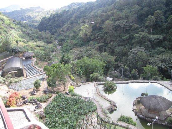 Tuba, Filipinas: Museum garden