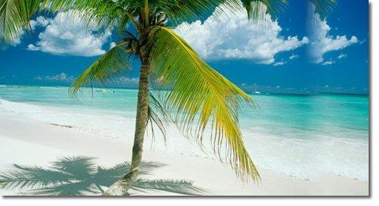 Campamento Punta Cana: Vista de la Playa White Sands