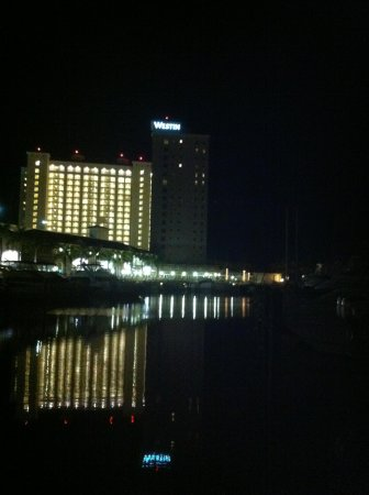 The Westin Cape Coral Resort At Marina Village:                   Evening stroll see the stars