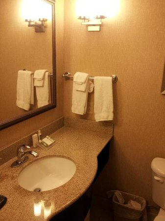 Hilton Garden Inn Warner Robins: The sink