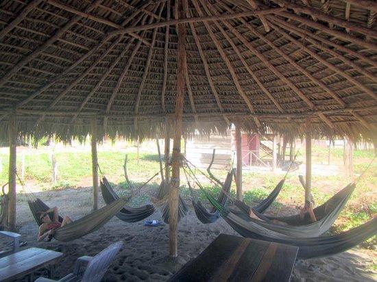 Rancho Tranquilo:                   The hammoks