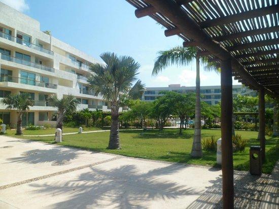 Occidental Cartagena:                   Area recreativa